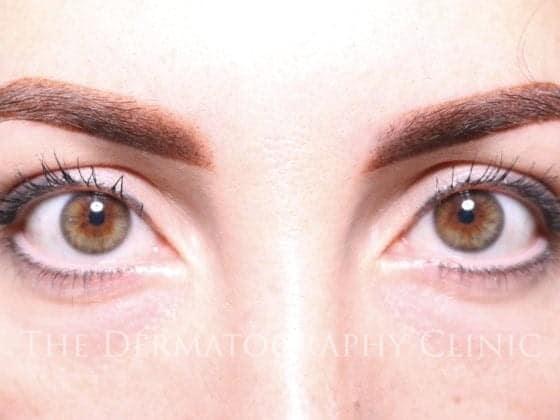 ombre powder fill brows